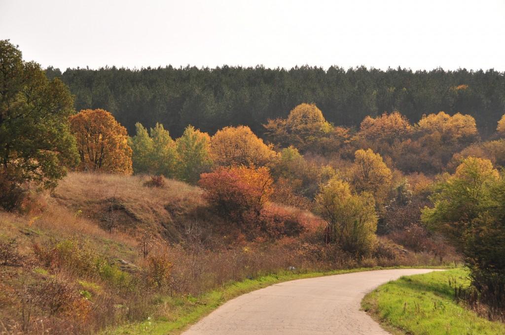 есен в поломието